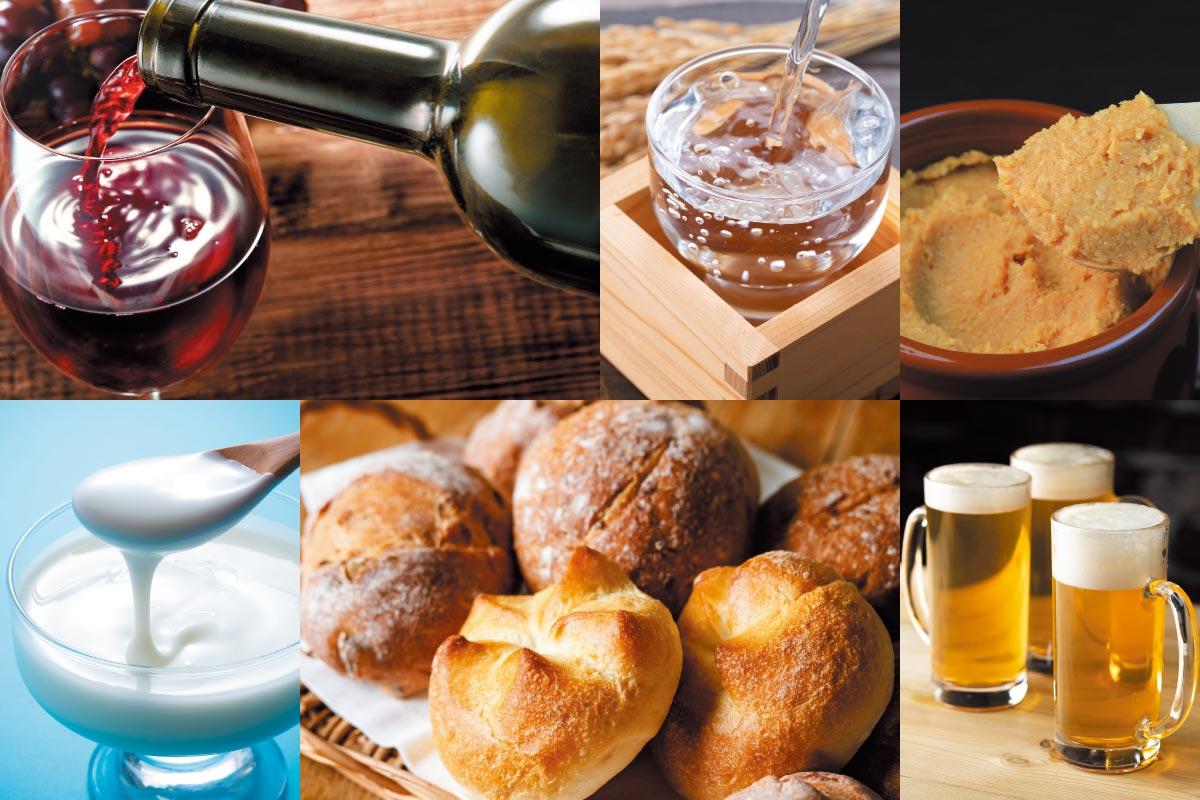 醸造発酵コース