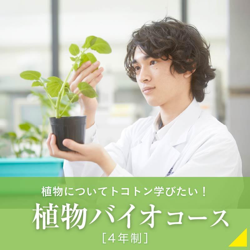 植物バイオコース