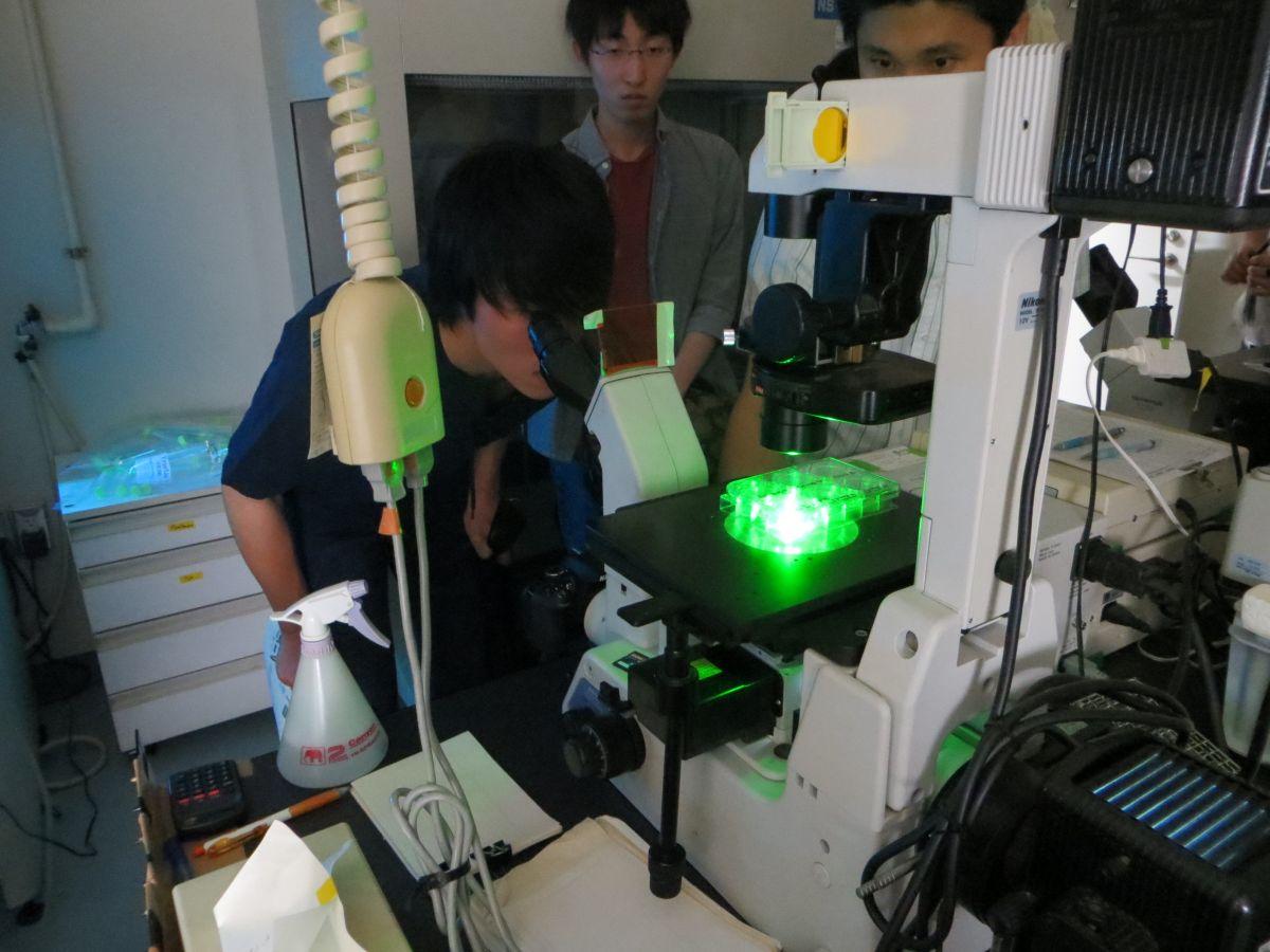 東京大学医科学研究所1