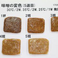 授業紹介~発酵食品実習~